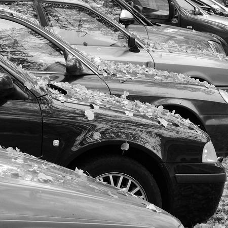 Защищаем кузов своего автомобиля от коррозии